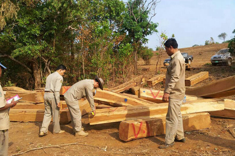 Mondolkiri provincial police and forestry officials measure pieces of luxury wood seized from a local logging company in March. (Tep Sareth)