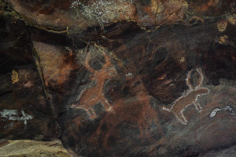 Cave paintings depict deer.